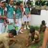 mytree-delhi-ncr-2