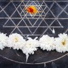 Sri-Chakra-Yantra,-A-temple-dedicated-to-Mother