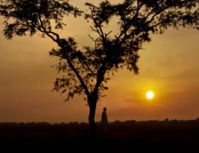 WoH-Kannada-version-Video