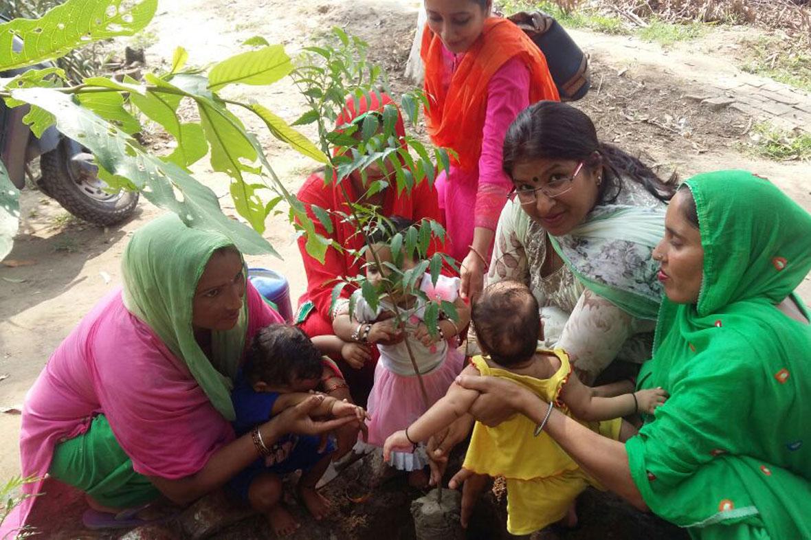 mytree-delhi-ncr-1