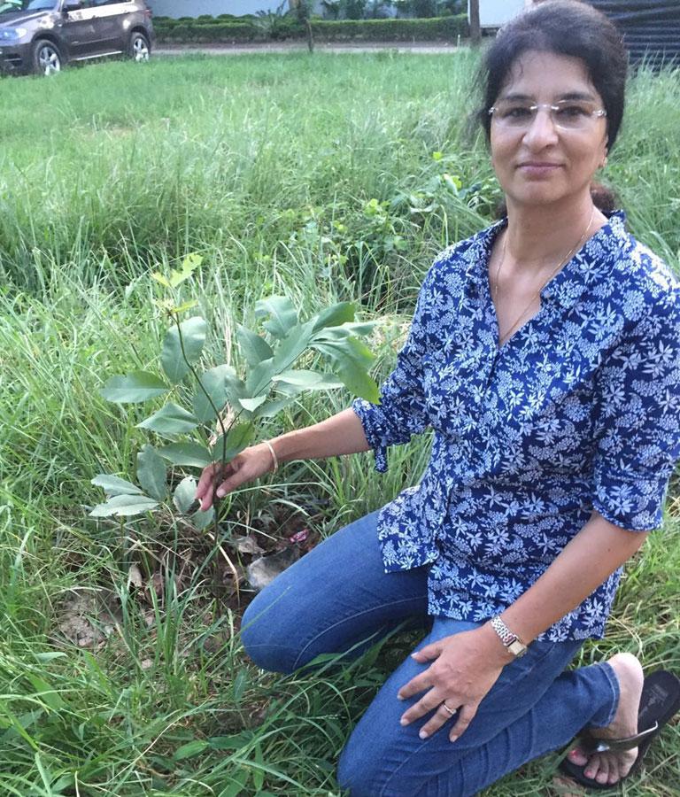 mytree-delhi-ncr-11