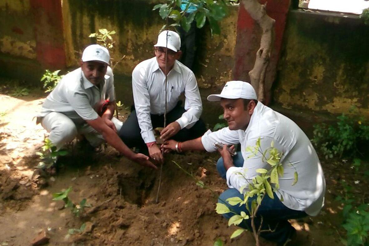 mytree-delhi-ncr-3