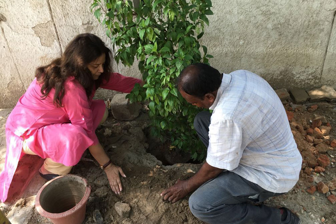 mytree-delhi-ncr-4