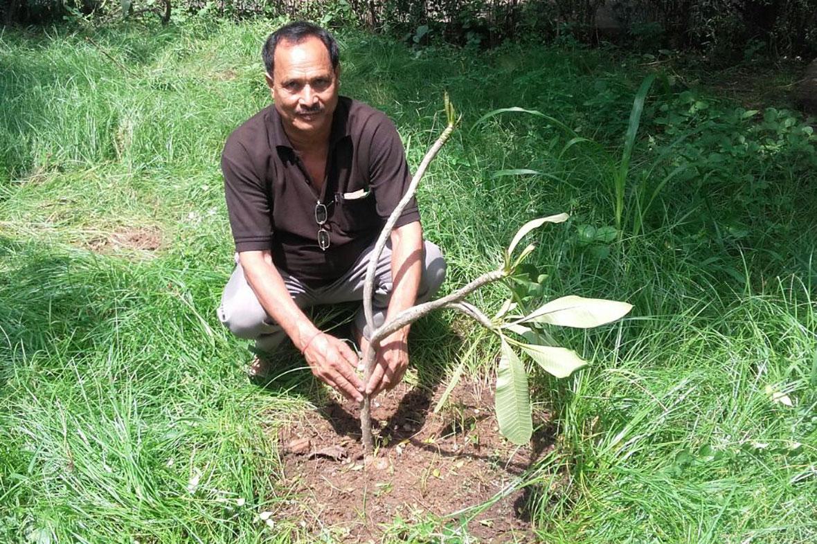 mytree-delhi-ncr-5