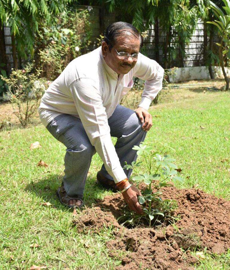 mytree-delhi-ncr-8