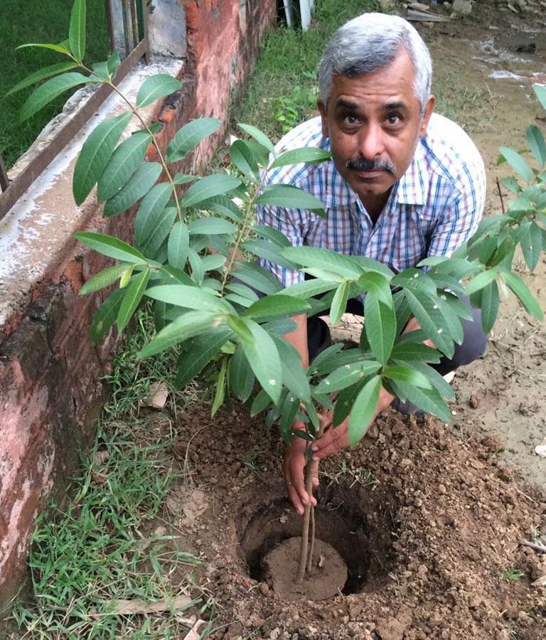 mytree-delhi-ncr-9