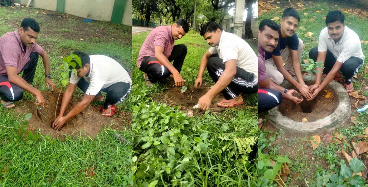 mytree-project-chennai-tamil-nadu-1