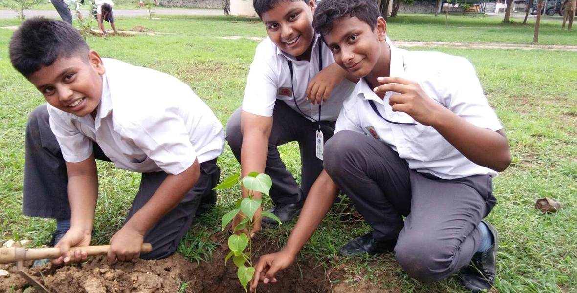mytree-project-chennai-tamil-nadu-4