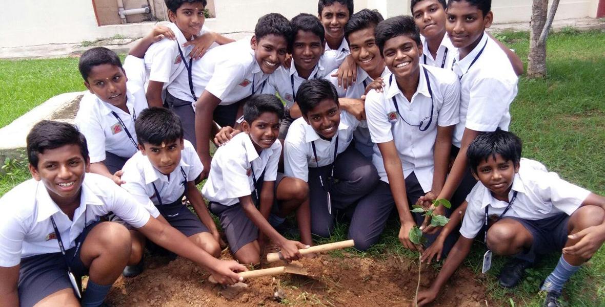 mytree-project-chennai-tamil-nadu-5