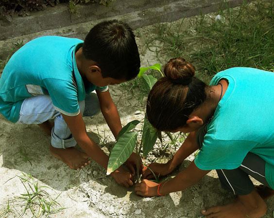 Tree-Planting-Chanda-Satsang-Vidyalaya